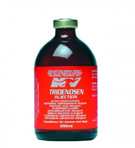Tridenosen-Injection