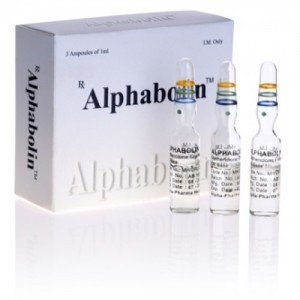 Alphabolin (methenolone enanthate) 5 ampoules (100mg/ml)