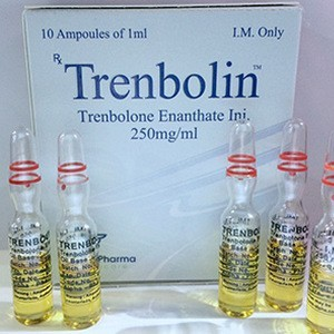 Trenbolin (ampoules) (trenbolone enanthate) 10 ampoules (250mg/ml)